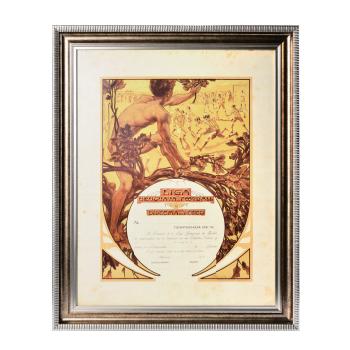 1914年海报式足球证书